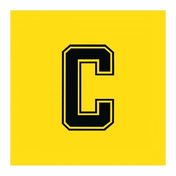 Yellow & Black Bibs Single